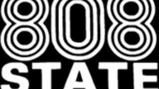 808 STATE Cobra Bora revisited