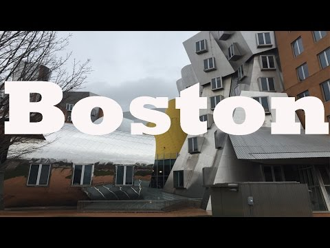 Boston Trip & American Thanksgiving