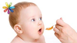Главные ошибки прикорма малыша – Все буде добре. Выпуск 864 от 18.08.16