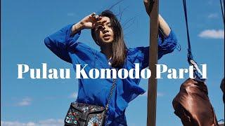 LIBURAN RUSUH KE PULAU KOMODO - TRAVEL VLOG EP : 25    Jovi Hunter
