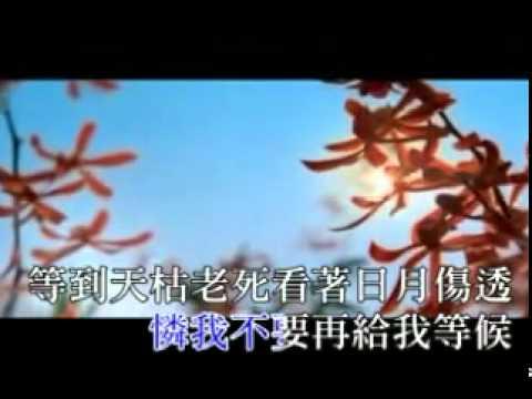劉德華 Andy Lau - 地球的心聲