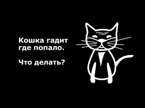 Вопрос: Как отучить вашего кота мочиться в неположенных местах?