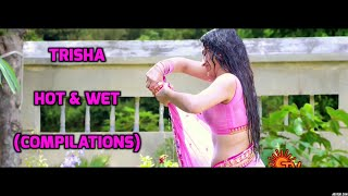 Trisha hot wet saree / edit (sexy actress)