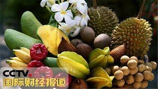 [国际财经报道] 中秋临近果市热 东盟水果畅销 | CCTV财经