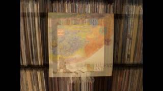 Tasavallan Presidentti - Dance (Vinyl)
