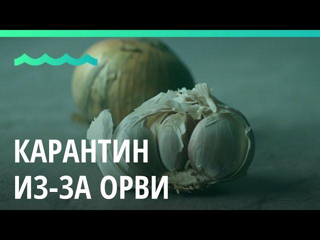 В Алтайском крае объявили карантин из-за ОРВИ