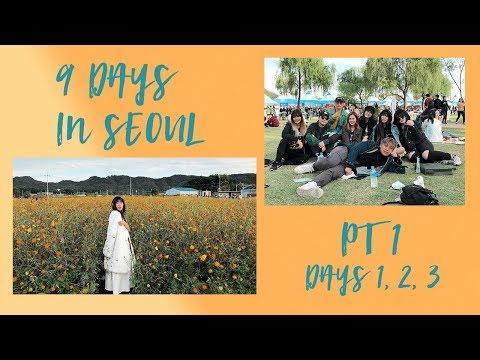 🇰🇷  9 Days in Seoul: NRB, The CRY Ground, Yangju Nari National Park