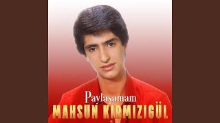 Şen Ol Diyarbakır Resimi