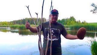 Ночная ловля сазана на палку! Рыбалка без понтов. Примитивная снасть рулит!