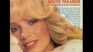 Who Pays The Ferryman - Norrie Paramor