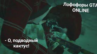 GTA online: как мы с другом лофофоры искали, но видос получился на 2 часа. / Видео
