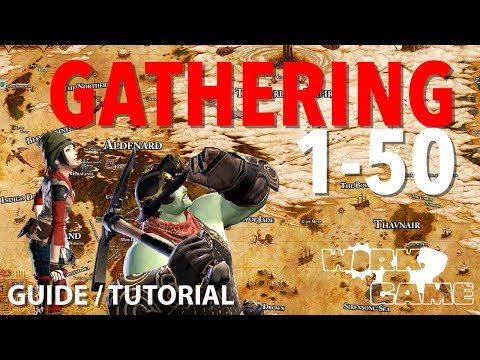 FFXIV Leveling Gathering 1-50 [BTN And MIN Guide]