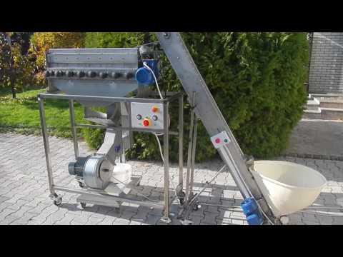 Walnut Cracking Machine - NEW GENERATION (whole Production Line)