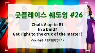 [미드랑 영어공부] 굿플레이스 쉐도잉 #26 (한영자막…