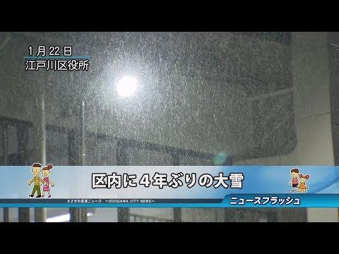 区内に4年ぶりの大雪