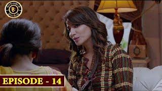 Bewafa Episode 14 | Naveen Waqar & Ali Rehman | Top Pakistani Drama