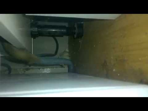 How To Get Rid Of Mice Under The Kitchen Sink