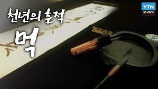 천년의 흔적, 먹 / YTN 사이언스