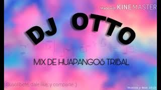 MEZCLA DE HUAPANGOS TRIBAL DJ OTTO