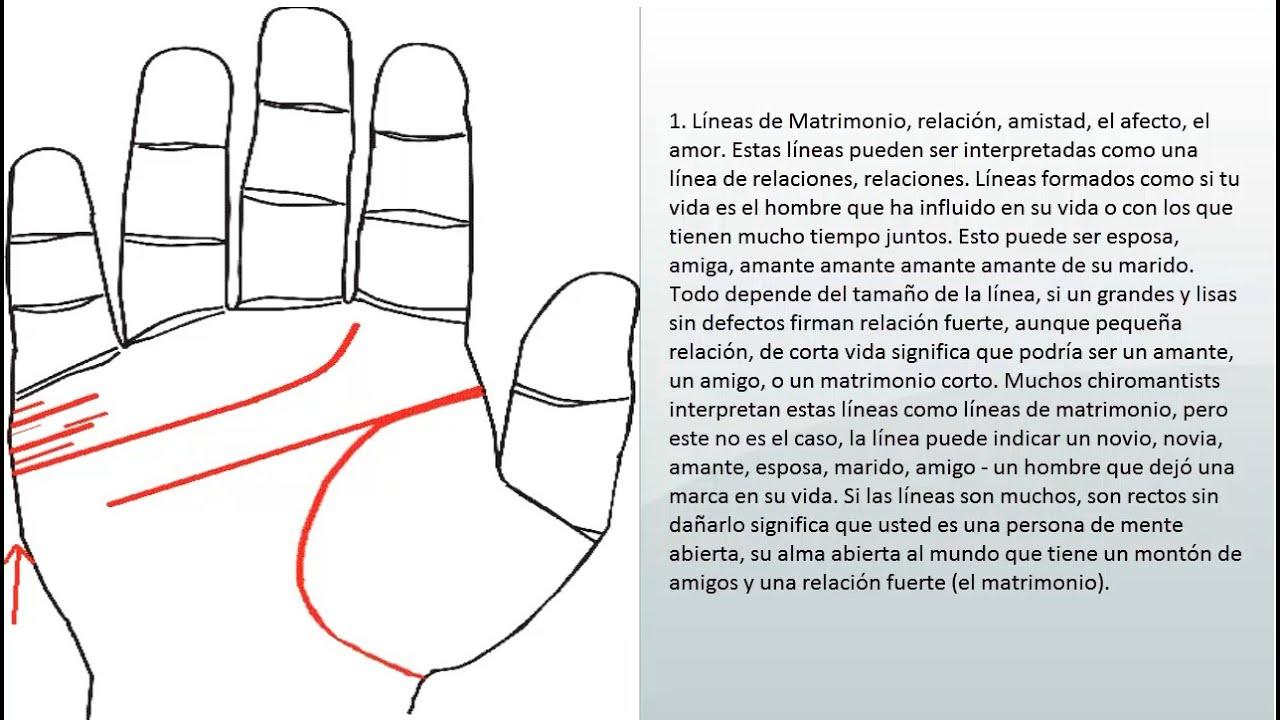 Lineas y signos del matrimonio hijos amor linea del - Leer la mano hijos ...