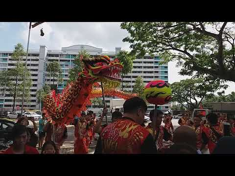 Singapore Wei Jin Dragon Dance and Big Flag Performances at AMK BLK 232 on 9/2/19  CNY Day 5