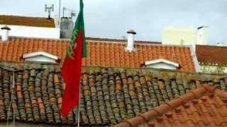 "HERMÍNIA SILVA - ""Telhados de Lisboa"""