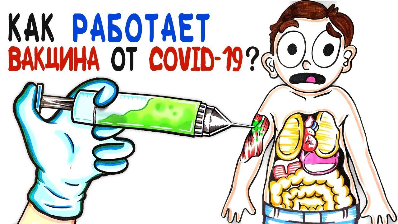 Как работает мРНК вакцина от COVID-19? [AsapSCIENCE]