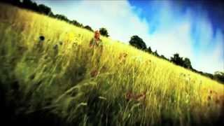 Kate Bush - The Sensual World (Instrumental Version)