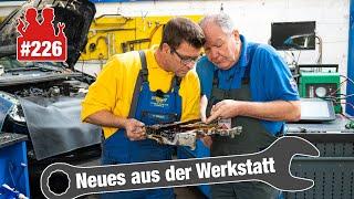 VW T5 ohne Ladedruck! | 1.000 € kalkuliert Ford für zu mageren Mondeo ... 🧐 | Opel: Wasser im Öl!