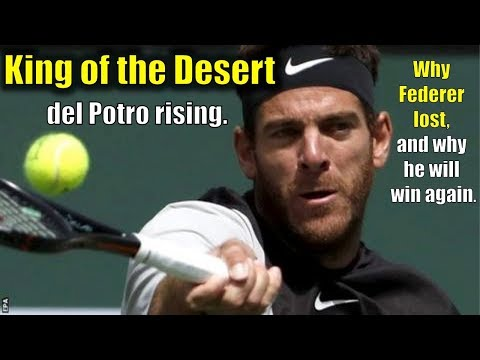 Federer vs. del Potro Indian Wells Final | del Potro defeats Federer l Match Analysis and Discussion