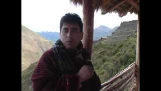 William Luna - Una paloma sobre una rama