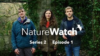 NatureWatch S2: Episode 1 - Birds, Bees & Beavers