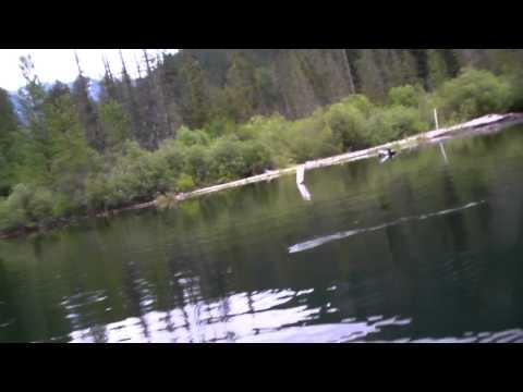 BC Fishing Report