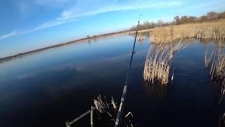 Батя Кум и Я И рыбы ни ya Рыбалка на щуку весной 2020 ловил только Батя