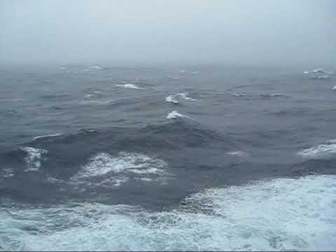 Ocean Liners vs. Cruise Ships