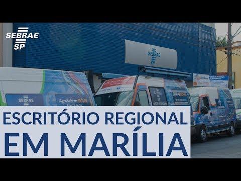 Conheça Os Serviços Do Sebrae-SP Para As Cidades Pertencentes à Região De Marília