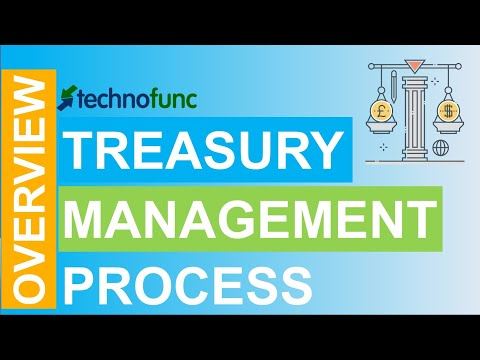 Introduction to Treasury Management Process