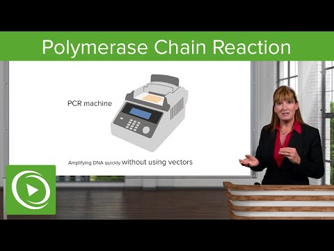 Polymerase Chain Reaction – COVID-19 | Lecturio