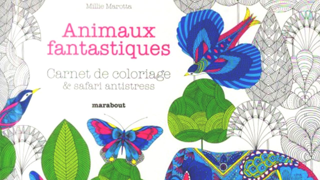 Carnet de coloriage animaux fantastiques youtube - Dessin animaux fantastiques ...