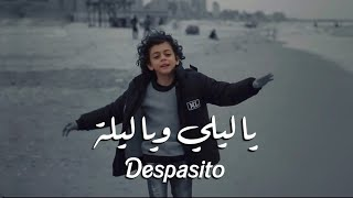 يا ليلي ويا ليلة + ديسباسيتو 🔥| Ya Lili + Despacito  ( Official 🔥 Video )