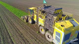 Atwater Farms Inc. - Sugar Beet Harvest 2018