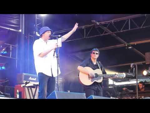 DMA'S -  Live at Falls Festival, Byron Bay 2019 (Highlights)