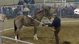 Monty Roberts and Hette part 1