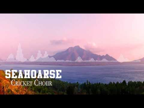 Seahoarse - Cricket Choir