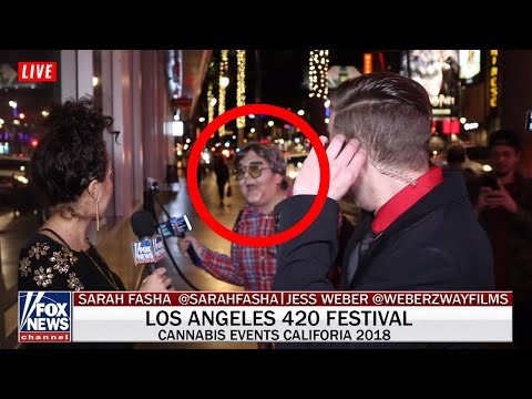 Was the Andy Milonakis with the Drunk Reporter?