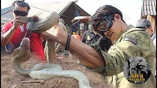 Nick Wildlife EP.1 ภารกิจย้ายรังงูเห่าพ่นพิษ(ต้อนรับสงกรานต์)