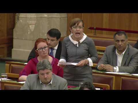 A nőügyekről kérdezte Orbán Viktort Borbély Margit (MSZP)