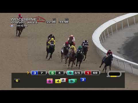 Woodbine, Tbred, October 29, 2017 Race 6