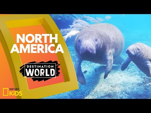North America | Destination World