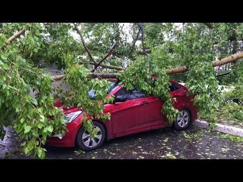 Поваленные деревья, оборванные провода, повреждённые дома